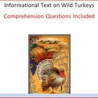 Informational text on wild turkeys along with comprehension questions. Students will learn several facts about how turkeys go through life. Great f...