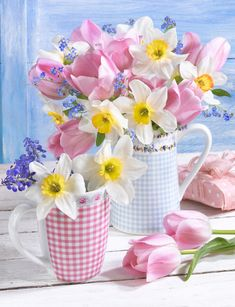 Pretty checked mugs of flowers. Amazing Flowers, My Flower, Beautiful Flowers, Beautiful Flower Arrangements, Floral Arrangements, Pansies, Daffodils, Flower Wallpaper, Floral Bouquets