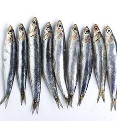 Rica sardinha | SAPO Lifestyle