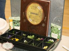 Harry Potter Party Herbology Class. Kids planted seeds to take home