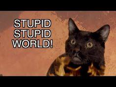 ▶ Talking Kitty Cat - ♫ Stupid Stupid World ♫ - YouTube