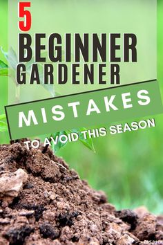 There are five first time gardener mistakes to avoid that we all do, and you can avoid. Learn what they are and what to do this gardening season instead. Vegetable Garden For Beginners, Starting A Vegetable Garden, Gardening For Beginners, Gardening Tips, Planting Zones Map, Planting Seeds, Chorizo And Potato, Easy Vegetables To Grow, Buy Seeds