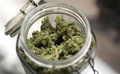 Its Good to cure cannabis in glass jars but remember to keep the top open for the first 1-2 days incase a build up of moisture.