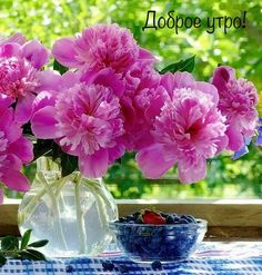Inder I invest online is a very expensive opportunity for you Beautiful World, Good Morning, Glass Vase, Flowers, Plants, Pictures, Postcards, Opportunity, Quotes