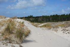 De Schoorlse duinen Country Roads, Mountains, Beach, Water, Travel, Outdoor, School, Gripe Water, Outdoors