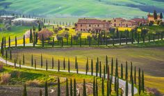 Tuscany region in Italy is often considered as the best place for a road trip thanks to its amazing photographic landscapes!