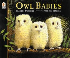 Owl Babies by Martin Waddell, illustrated by Patrick Benson, is a classic children's picture book. A timeless story that children can relate to, with stunning illustrations. Owl Babies Book, Board Books For Babies, Baby Owls, Nocturnal Animals, Diurnal Animals, Artic Animals, Petite Section, Best Children Books, Childrens Books