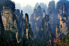 This is stunning. In the Zhangjiajie National Forest Park, in China, are found many huge quartz-sandstone pillars, which actually have inspired the creation of Avatar's Hallelujah Mountains.