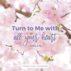 "Read the devotional thought at http://www.peaceforthestorm.com/2016/08/16/turn-to-me/ ""Now, therefore,"" says the Lord, ""Turn to Me with all your heart, with fasting, with weeping, and with mourning."" Joel 2:12 (NKJV)"