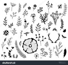 Rustic set of natural decorative elements vector  black , border , botanical , branch , card , collection , decor , decoration , decorative , divider , doodle , drawing , drawn , elements , flora , floral , flourish , flower , forest , frame , graphic , hand , hipster , illustration , ink , invitation , isolated , laurel , leaf , log , natural , nature , ornament , plant , retro , rustic , sawmill , silhouette , sketch , spring , summer , swirl , tree , vector , vintage , wedding  wood…