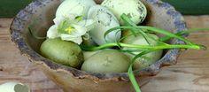 #Ostereier #natürlich mit #Pflanzenfarben färben. Wunderschöne Pastellfarben sind möglich oder sattes Braun mit Zwiebelschalen. Und garantiert giftfrei!