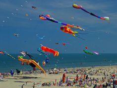 Cool Kites | cool kites