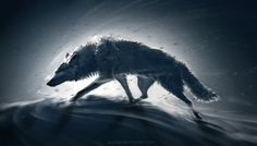 Wolf Poster, Banner or Canvas - Wind Anime Wolf, Fantasy Wolf, Fantasy Art, Magic Creatures, Yuumei Art, Wolf Poster, Wolf Illustration, Wolf Wallpaper, Wolf Pictures