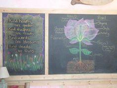 Apologia Botany - Waldorf ~ 5th grade ~ Botany ~ chalkboard drawing