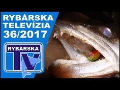 Rybárska Televízia 36/2017 - relácia pre rybárov o rybách a rybolove - Rybárska televízia - Velkosklad rybárske potreby SPORTS-sonary motory člny Zebco Browning Salmo Sportex Lowrance Black Cat