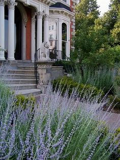 The Mansion on Delaware Avenue's front yard garden