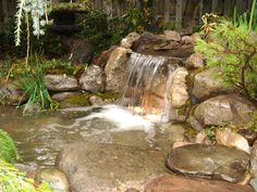 backyard waterfall water garden pond restoration remodel repair with led lighting, landscape, outdoor living, ponds water features, New Waterfalls Replaced Repaired Re Installed Refurbished Fixed Remodeled Restored with LED Lighting and Aquascape Filtration System for this Rochester NY Pond Acorn Landsdcaping Certified Aquascape Contractor of Rochester NY