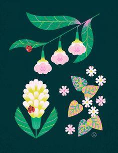 Plant Illustration, Pattern Illustration, Botanical Illustration, Graphic Illustration, Floral Illustrations, Illustrations Posters, Sketchbook Inspiration, Art Tutorials, Lettering