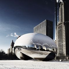 The Snow Bean by cocu