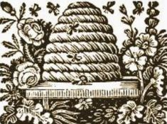 ≗ The Bee's Reverie ≗  bees and old bee skep illustration