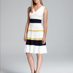 Anne Klein Colorblock Fit And Flare Dress