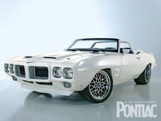 Pontiac Firebird... LOVE!!!! I'd do T- T-shirtstop & a purple, turquoise & maybe some silvery pink bird! Purple interior