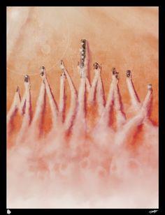 """Niesamowicie klimatyczny plakat""""Mad Max: Na drodze gniewu"""" (autor: Andy Fairhurst)"""
