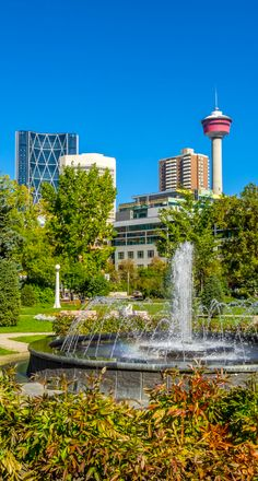 Spring Clean Up, Calgary, Fountain, Landscaping, How To Remove, Snow, Building, Outdoor Decor, Travel