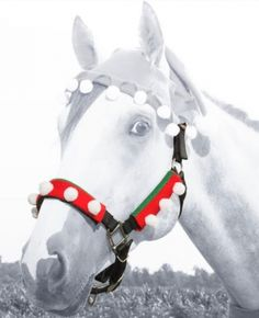 Tough-1 Holiday Elf 3-Piece Halter/Bridle Cover Set