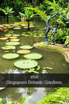 Singapore Botanic Gardens have become the country's first UNESCO site.