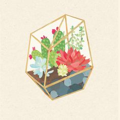 """sweetmans: """" terrarium collection all together :) """""""