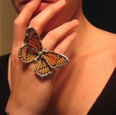 Viceroy Butterfly Ring  Real Butterfly Jewelry  Made to door neile
