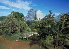 San Antonio Botanical Garden, Photo Credit: Al Rendon