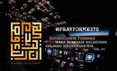 #mh370
