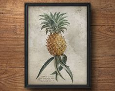 Ananas afdrukken, ananas kunst, botanische kunst aan de muur, Vintage botanische, antieke botanische, ananas poster, tropisch decor, antieke fruit