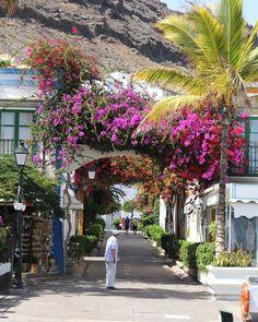 Gran Canaria | Puerto de Mogán | waseigenes.com