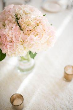 pink hydrangeas   Sam Stroud #wedding