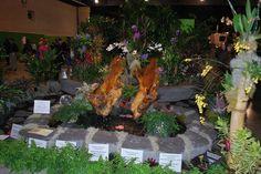philadelphia flower show 2012   Flickr - Photo Sharing!