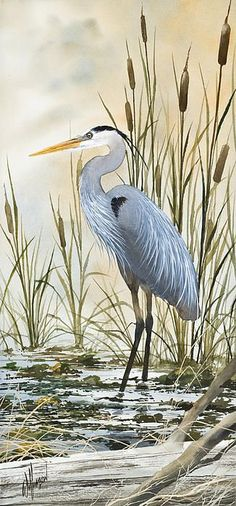 Heron And Cattails by James Williamson - Heron And Cattails Painting - Heron And Cattails Fine Art Prints and Posters for Sale