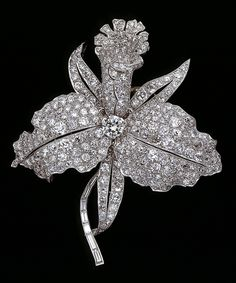 This is a brooch made by Van Cleef & Arpels in 1928. At the height of Art Deco, it must have been an unusual design at the time to choose an orchidn, which was one of the icons of the Art Nouveau period. The Art Deco features of this piece are the platinum setting with different cut diamonds: brilliant, pave, and baguette.  The brooch is displayed at the Cooper-Hewitt.
