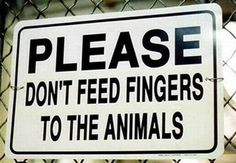 May we feed them toes instead?