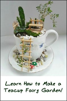 Get The Kids Interested in Gardening by Making Cute Fairy Gardens From Teacups and Saucers!