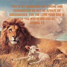 Arte Lds, Images Bible, Bible Photos, Earth Poster, Lion And Lamb, Le Roi Lion, Prophetic Art, Like A Lion, Kingdom Of Heaven