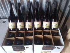 Piluso Vineyard in Aumsville, OR Splash Park, State Of Oregon, Pacific Northwest, Wine Rack, Vineyard, Business, Vine Yard, Vineyard Vines, Store