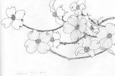 Dogwood Tree Tattoo Posts 43 Ideas For 2019 Pink Dogwood, Dogwood Trees, Dogwood Flowers, Big Flowers, Flowers Garden, Pacific Dogwood, Dogwood Flower Tattoos, Stencil Printing, Plant Drawing