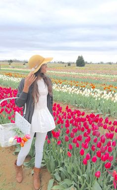 texas tulips dallas texas--Texas-Tulips-10656 Farm to Market Road 2931, Pilot Point, TX-http://texas-tulips.com/