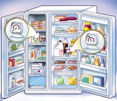Where and how cool your freezer/ fridge should be. Food Science.