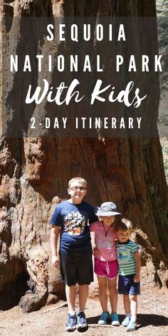 In this article I teach you how to plan the perfect 2 day itinerary for Sequoia National Park with your kids and tips for worldschoolers on how to prepare for and learn more about Sequoia National Park. #nationalparks #california #sequioanationalpark Sequoia National Park, National Parks Usa, Joshua Tree National Park, Affordable Family Vacations, California Vacation, Road Trip Usa, Family Adventure, Best Places To Travel, 50 States