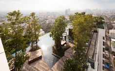 Condominium Garden by Shma Design pool design