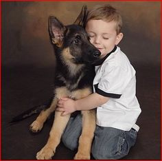 #GSD....a boy & his dog